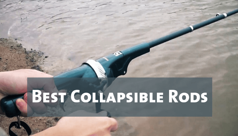 Best Collapsible Rods