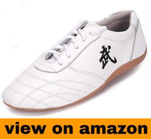 BJSFXDKJYXGS Chinese Taichi Shoes