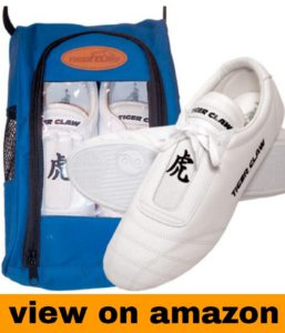 Tiger Claw Martial Art Shoes